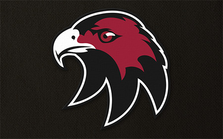 Cockburn Hawks Ice Hockey Club Logo Design & Brand Identity Perth WA